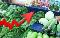 Fenomena Alam dan Tata Niaga Pertanian, 2 Faktor Utama Penyebab Kenaikan Harga Komoditas Pertanian
