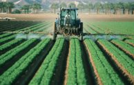14 Jenis Pestisida Tanaman Berdasarkan Sasaran OPTnya