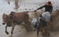 Inilah Tipe-tipe Petani yang Ada di Indonesia. Anda Tipe yang Mana?
