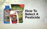 Tips Cara Memilih Pestisida yang Tepat