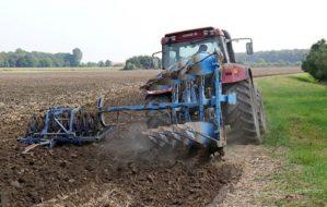 Cegah Layu Sejak Dini dengan Pengolahan Tanah yang Baik